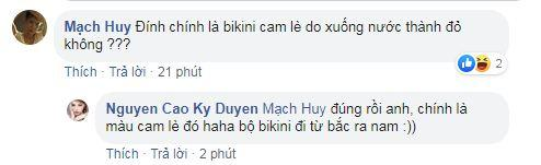Kỳ Duyên, Minh Triệu, sao Việt