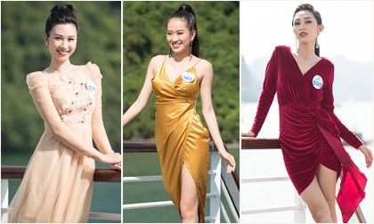Miss World Vietnam, sao Việt