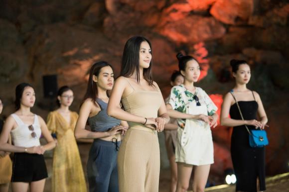 hoa hậu Trần Tiểu Vy, sao Việt