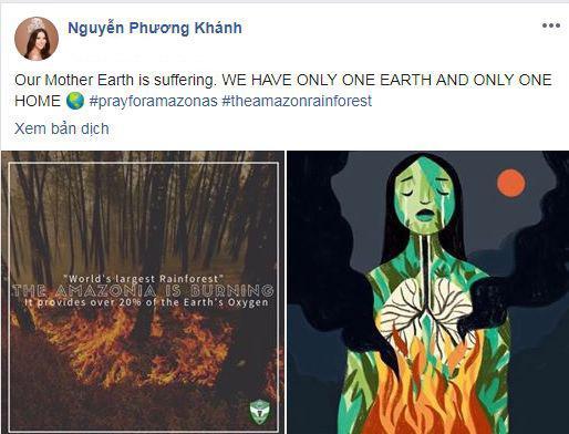 rừng Amazon, rừng Amazon cháy, sao Việt, Phương Khánh, Tiểu Vy, Tăng Thanh Hà