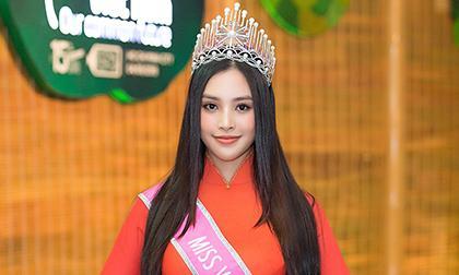 Trần Tiểu Vy, sao Việt