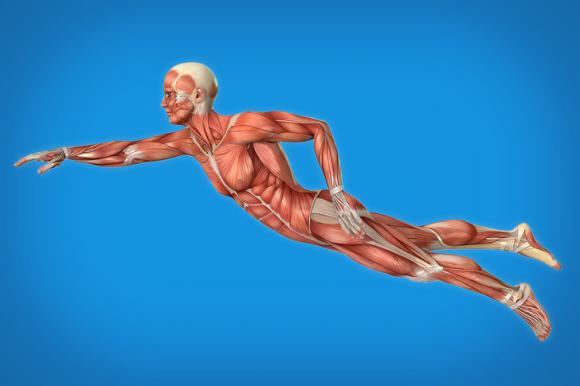 5 bài tập giúp bạn sống lâu hơn