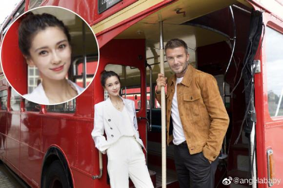Angelababy,David Beckham,sao Hollywood,sao Hoa ngữ