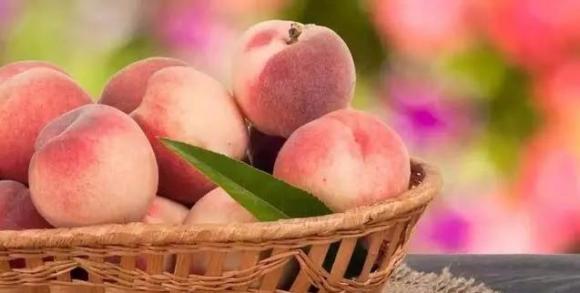 ăn trái cây sau bữa ăn, chăm sóc sức khỏe đúng cách, lưu ý khi ăn trái cây sau bữa ăn