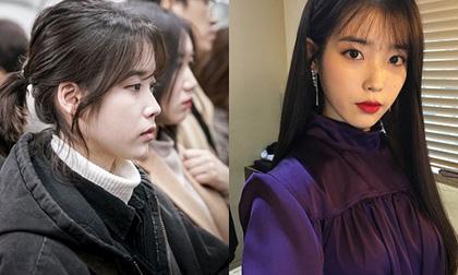 Park Hyung Sik, Kai, Jang Geun Suk, Jung Hae In, sao hàn