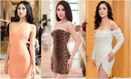 Hoa hậu Hoàn vũ 2019, sao Việt