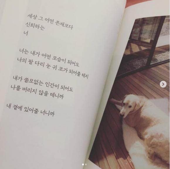 Goo Hye Sun,mẹ của Goo Hye Sun,sao Hàn,Goo Hye Sun và Ahn Jae Hyun ly hôn