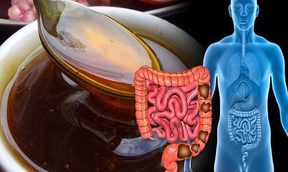 chăm sóc sức khỏe đúng cách, loét dạ dày, thảo dược tự nhiên chữa loét dạ dày