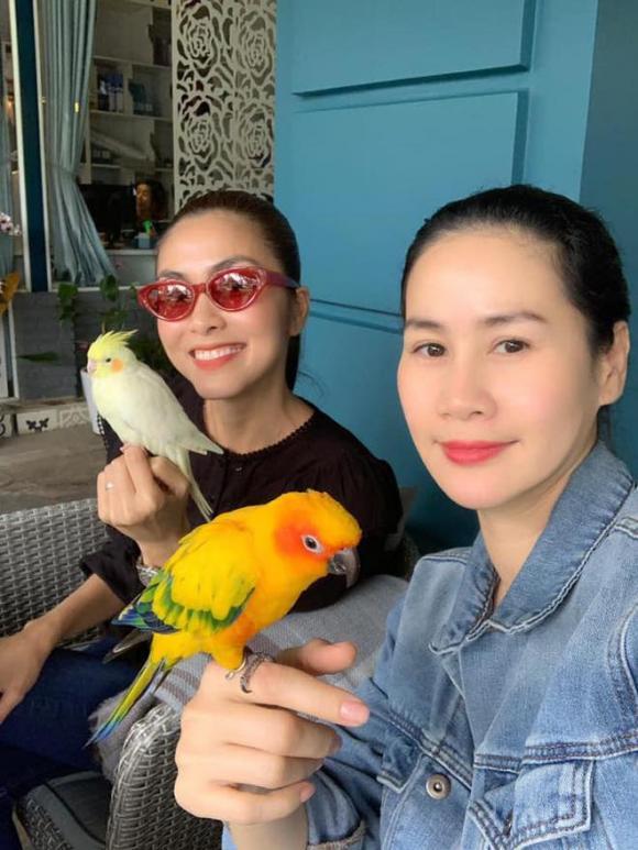 Diễn viên thân thúy hà, Tăng Thanh Hà, sao Việt