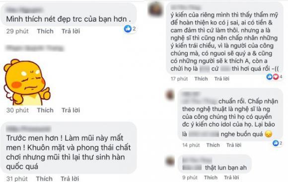 Việt Anh, Việt Anh phẫu thuật thẩm mỹ, sao Việt