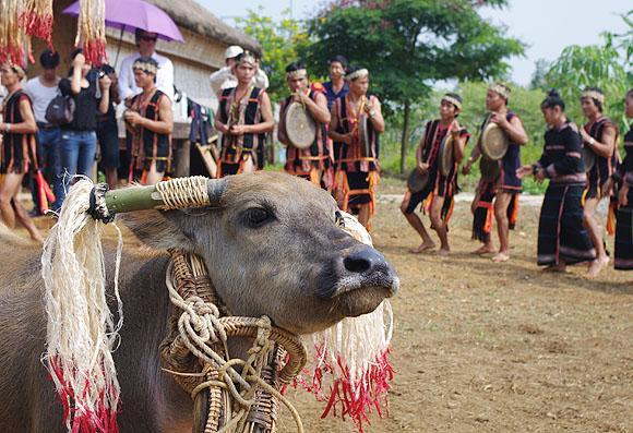 Độc đáo lễ hội mừng nhà mới của người Giẻ Triêng