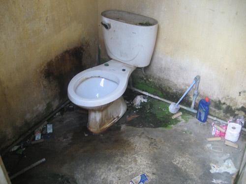Hàng loạt nhà vệ sinh bốc mùi không chịu nổi