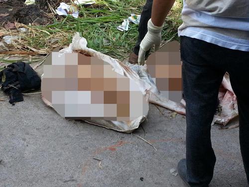 Vụ giết người chặt xác ở Đồng Nai: Ai phát tán hình ảnh 'man rợ' lên mạng?