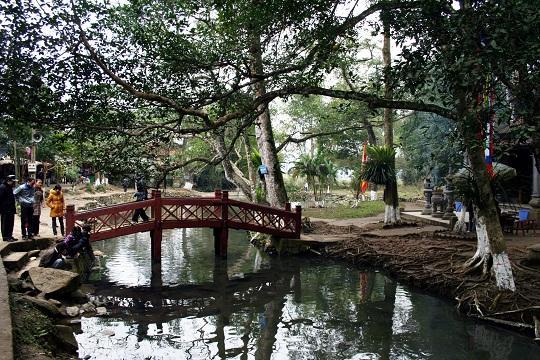 Chùm ảnh: Kỳ bí suối cá thần có một không hai ở Việt Nam (P1)