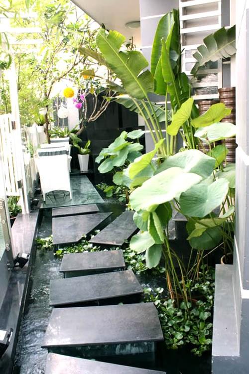 Giải pháp cho nhà chật nhưng vẫn trồng được cây xanh