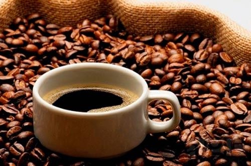 Meo giam mo bung bang cafe