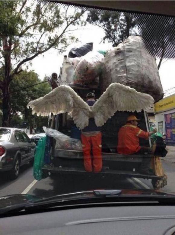 Thiên thần rác