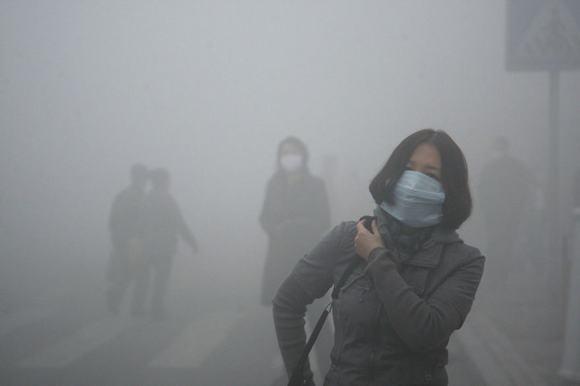 ô nhiễm môi trường  21