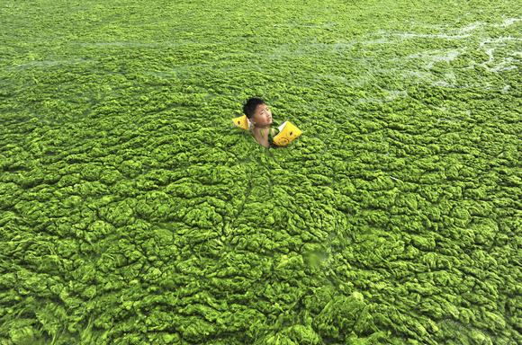 ô nhiễm môi trường  19