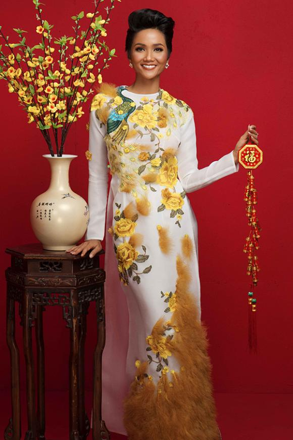 H'Hen Niê, Hoa hậu, Á hậu Hoàn vũ 2017