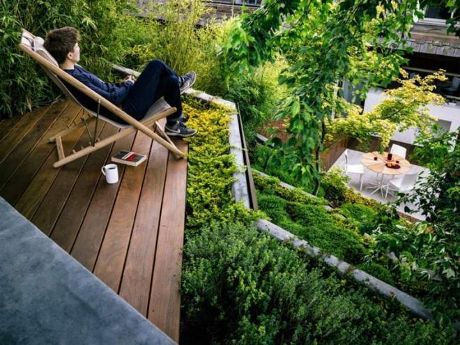 Thiết kế sân vườn, sân vườn hiện đại, sân vườn đẹp, nhà đẹp