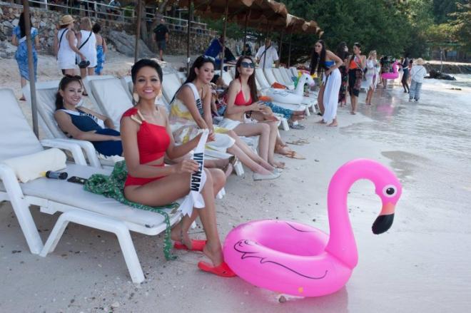 H'Hen Niê, Hoa hậu Hoàn vũ 2018, sao việt