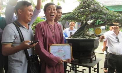 Hoài Linh ôm cây cảnh nửa tỉ đi thi và giành luôn giải nhất