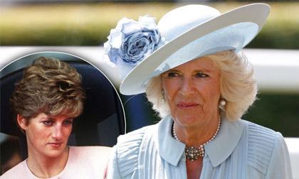 Một lòng một dạ tôn thờ cố Công nương Diana, người hâm mộ dậy sóng trước thông tin bà Camilla sẽ trở thành Hoàng hậu nước Anh