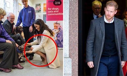 """Hoàng tử Harry bị """"gọi tên"""" sau tin đồn mang thai giả của vợ vì lý do này"""